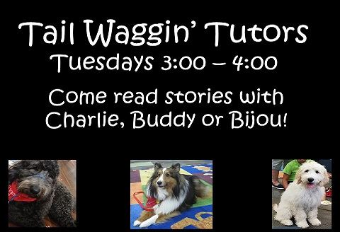 Tail Waggin Tutors fall 18b